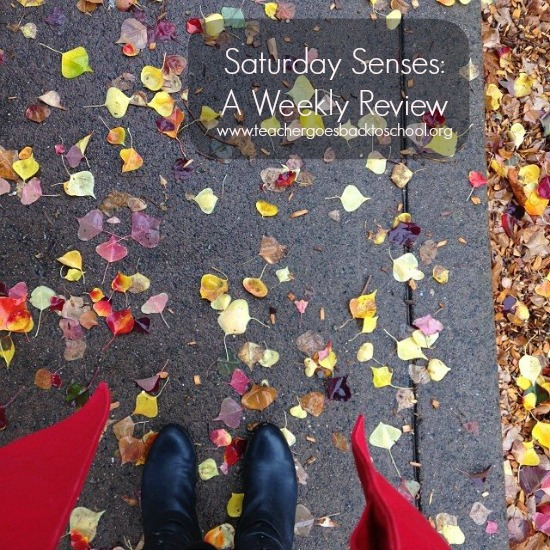 saturday senses red raincoat