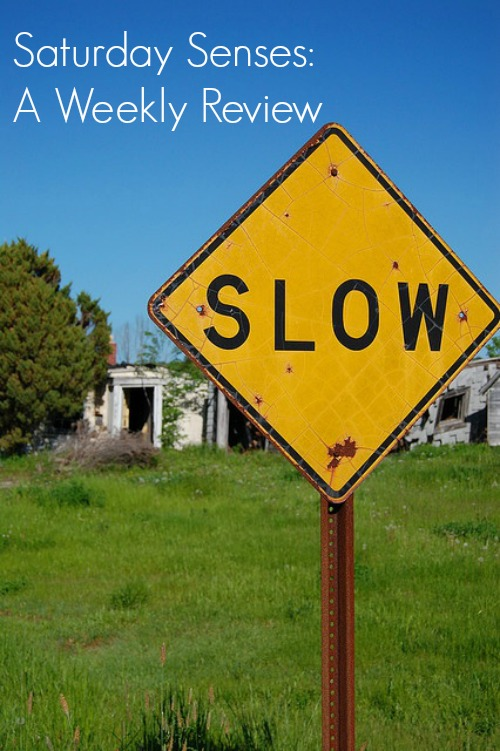 slow down weekly reflection